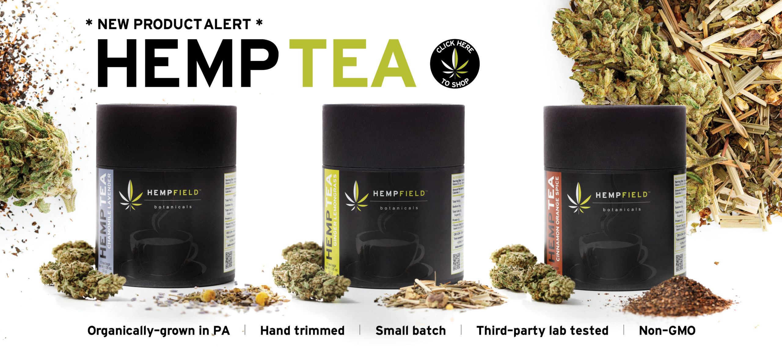 Now Available | Hemp Tea | Hempfield BotanicalsHFB_Banners_HempTea_1280x569