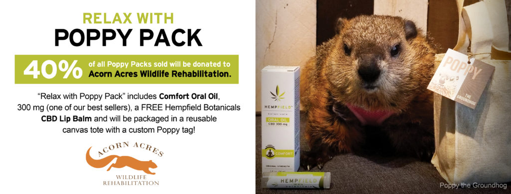 Relax with Poppy Pack | Poppy the Groundhog | Hempfield Botanicals